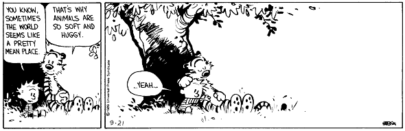 Calvin and Hobbes - Friendship